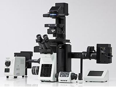 Fluorescence microscope and imaging system